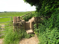 Love these kinds of stile