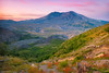 Mount Saint Helens (Jesse Estes) Tags: volcano jessy mountsainthelens tropicaliving jesseestes jesseestesphotography