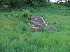 Steps in old garden of Milton Lockhart (Elizmar) Tags: heritage history scotland clydevalley southlanarkshire miltonlockart