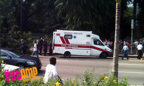 Woman struck by fallen tree branch outside Istana