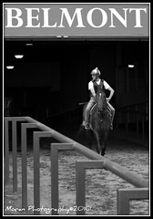 Breakfast at .... (EASY GOER) Tags: park horses bw horse sports animals racetrack digital canon athletics action belmont competition running racing entertainment runners athletes races equine competion thoroughbreds 2010 sportofkings christopheclement