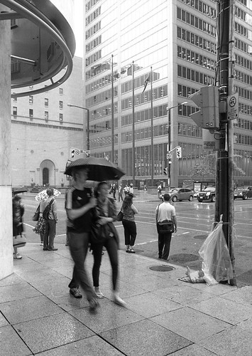Spring Rain at King and Bay