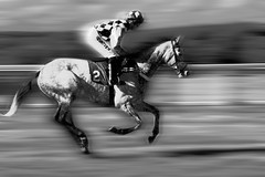 Horse Power (Christopher David Black) Tags: camera old horse white black blur digital race speed vintage photography photo blurry background sony northamptonshire fast style running racing jockey dslr speedy rider blured racecourse northants racer greyscale spped a350 walwyn