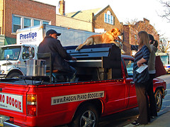 Traveling Piano Ambler, Pennsylvania (TravelingPianoMan) Tags: park street city trees winter boy summer people urban music dog mountain mountains male fall girl female rural truck fun outside outdoors town spring backyard friendship random unique events country crowd group performance performing piano suburbia couples parties pickup player neighborhood driveway stop novelty jamming improvisation danny boner rest suburbs traveling roadside breeze pianist performers impromptu communities mydog jammers spontaneous synchronicity kean spontaneity poarch