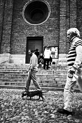 Menimals (p$ychoboyJ@ck) Tags: bw italy dog man men animal cane walking italia streetphotography bn uomo lombardia animali animale pavia passeggio camminare bassotto