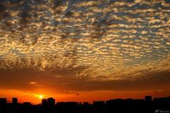 Dawn outside my corridor (BP Chua) Tags: orange cloud sun building sunrise dawn singapore formation hdb platinumheartaward tripleniceshot flickraward5 flickrawardgallery