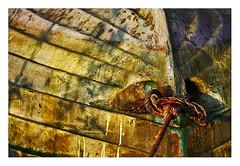 coque (Marie Hacene) Tags: bateau coque voile textures