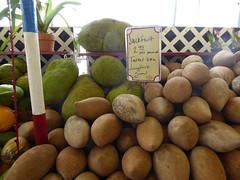 RobertIsHere06 (alicia.garbelman) Tags: homestead florida robertishere jackfruit