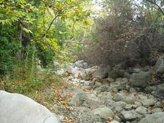 Zuma Canyon Creek 1