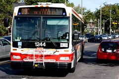 TTC 1244 (Transit Scope) Tags: bus classic public gm montreal ttc ottawa sto transit gatineau stm stl rtc mci octranspo toonto novabus t6h5307n