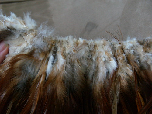Feathers sewn together