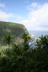 IMG_4480 (wrongfrench) Tags: hawaii bigisland waipio waimanu