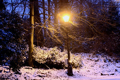 Snowy_Heath_0014 (Reasonable Jim) Tags: england london lamp post fave narnia hampsteadheath hdr comment kenwood cslewis ijl