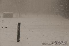 Dunkelheit V (Myrkwood666) Tags: winter bw snow monochrome dark blackwhite moody zwartwit sw melancholy schwarzweiss somber dunkel donker finster dster duister darksome seelenwinter mrkskygge myrkwood666