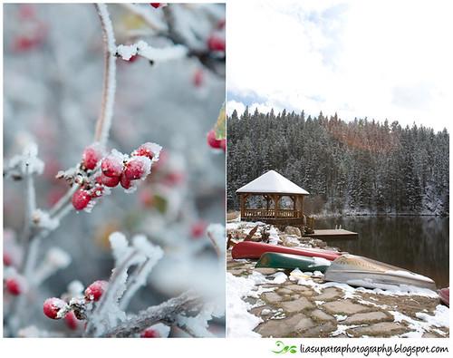 WinterBlog2