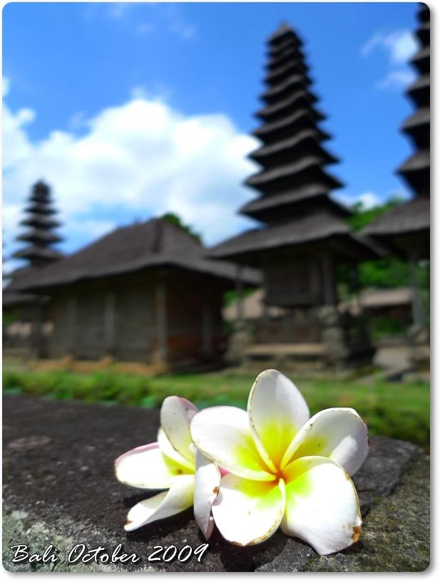 Bali Trip Oct 2009