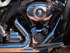 Harley detail