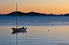 Sola (Carlos J. Teruel) Tags: espaa mar nikon paisaje murcia reflejo 2010 d300 105mm nikkor105mmf28gvrmicro xaviersam