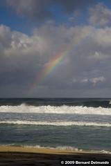 Hawaii 471 (www.Public-Waste.com) Tags: hawaii rainbow oahu northshore hi banzaipipeline