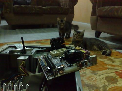 Sesi menaik taraf komputer Pentium II kepada AMD