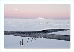 Mvatnssveit (Trausti lafsson) Tags: snow nature iceland frost soulscapes nikond80 traustilafsson imagesforthelittleprince