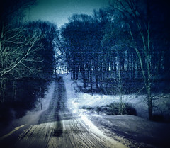 Sleigh Road (miche11) Tags: road trees thechallengefactory nightsnowwinter