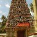 Bangalore : 16th Century Temple - 4
