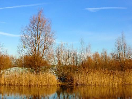 Bedfont Fishing Lake