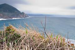 Oswald State Park-82.jpg (Thom Erickson) Tags: oregon coast pacificnorthwest oswaldstatepark
