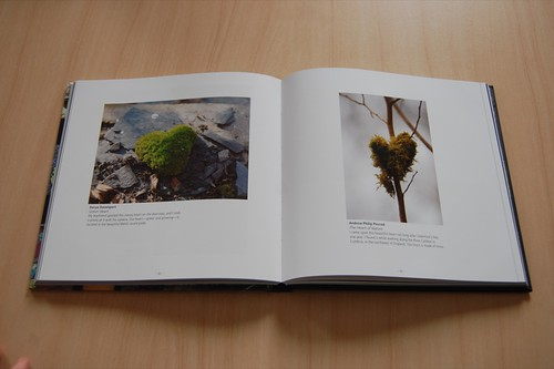 my photo (left) in 'focus: love'