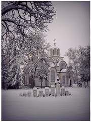 (#543) Tags: winter snow tree church dusk vojvodina orthodoxchurch beocin
