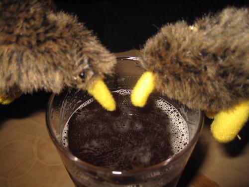Beer guzzling kiwis