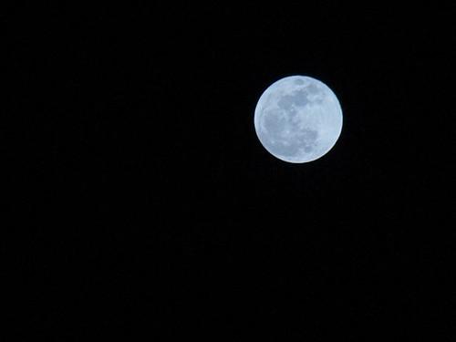 ♪ごーん。 まあるい月が出たわいなぁ。