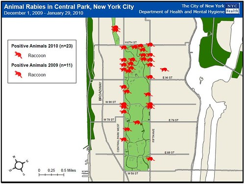 Animal Rabies in Central Park, 12/1/2009-1/29/2010, NYC DOH