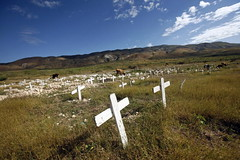 Unmarked Graves Sprawl Outside Port-au-Prince,...
