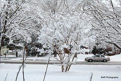 Venturing car in snow (BAR Photography) Tags: winter snow storm cold nature weather photography photoaday wintertime blizzard dayphoto