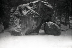 Fontainebleau (Lena in wonderland :D) Tags: camping schnee winter bw holiday snow elephant france cold nature rock analog forest canon frankreich rocks ae1 urlaub natur freezing climbing bouldering kalt schwarz fontainebleau klettern klte weis bouldern ocn