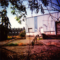 Tante Olga wears boots, as fairies do (Lisemai) Tags: holga boissy lieu particulier lisemai