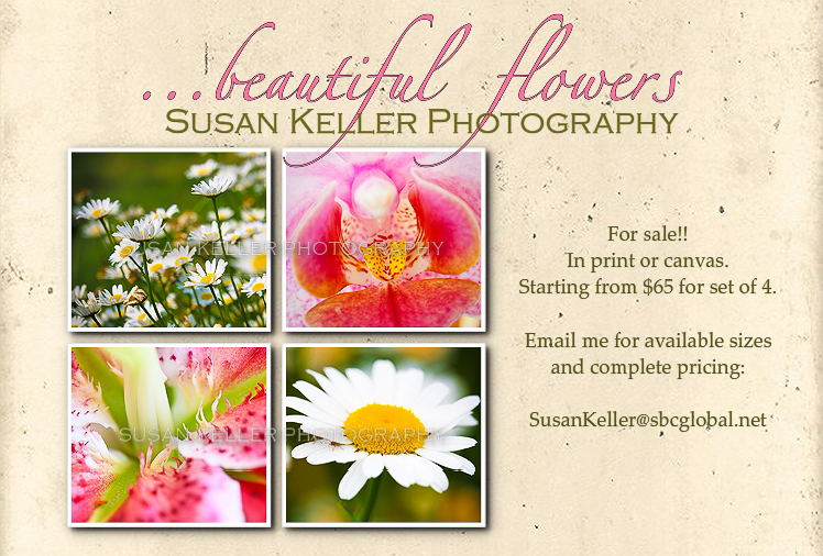 floral collage pricing inquiry