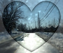 Happy Valentine's Day (VCH ) Tags: road trees sky snow nature wet sunshine buildings hearts heart picnik beautyunnoticed noreaster21010