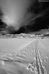 Trails To the Sky (LilFr38) Tags: sky cloud mountain snow france montagne landscape blackwhite traces trails ciel neige nuage paysage canonef1740mmf4lusm noirblanc ancelle hautesalpes lilfr38 canoneos5dmarkii uprisingmuse