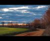 Al encuentro de los gansos (__Blanca__) Tags: ruta aves invierno laguna ocaso campos palencia mascaras gansos lanava ornitologia zepa fuentesdenava invernada