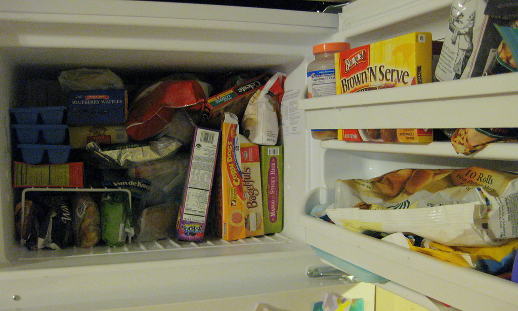 Freezer (Before)