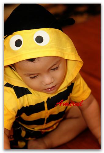 Amirul Bee 6