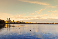 Jacqueline Kennedy Onassis Reservoir at Central Park (carlos_seo) Tags: park new york nyc usa ny newyork digital america photo nikon image centralpark united central picture jacqueline reservoir tokina 28 states kennedy 2010 onassis centralparkreservoir d90 1116 jacquelinekennedyonassisreservoir