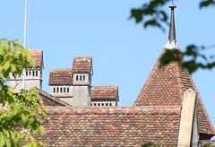2009.05.07.169 NEUCHATEL - Le château - cheminées (alainmichot93 (Bonjour à tous - Hello everyone)) Tags: castle suisse schloss castillo neuchatel chteau cantondeneuchatel châteaudeneuchatel
