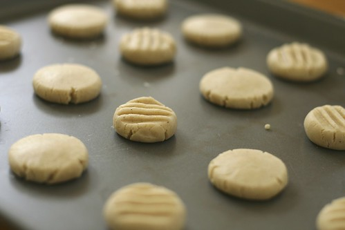 Shortbread Flattened