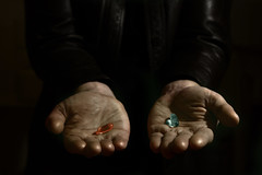 Red pill or blue pill? The Matrix (Macrolensfan) Tags: blue red film movie pill thematrix keanureeves redpillorbluepill twphch twphch046