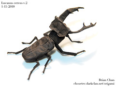 Stag Beetle Origami (v.2) (Chosetec) Tags: sculpture art bug paper insect japanese origami stag crafts fine beetle craft samurai folded onwhite kabutomushi kuwagata