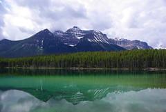 IMGP8181 (Reinhard.Pantke) Tags: travel canada unterwegs kanada rockiemountains icefieldsparkway reinhardpantke